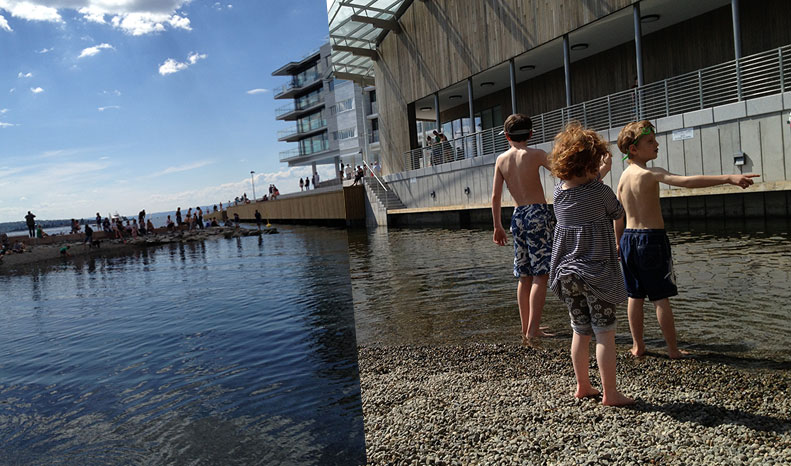fjord_swim